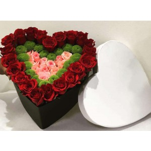 Heart Shape Blooming Love