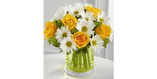 Yellow Bloom