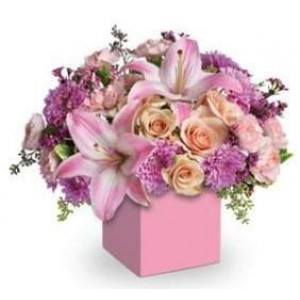 Beautiful Flowers in Box