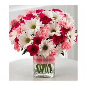 Sweet Purity Combo